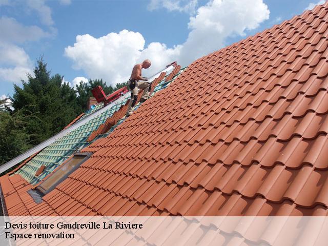 Devis toiture à Gaudreville La Riviere tél : 02.52.56.21.71